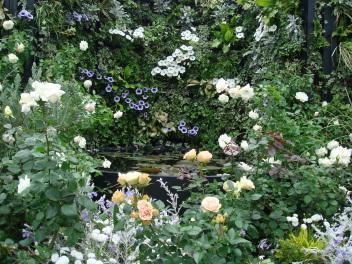 本野千代子さんの庭