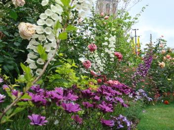 鷲尾いさ子さんの庭